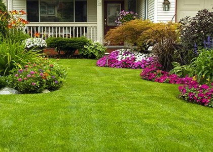 Nega zelenih površina i košenje trave