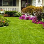 Service for garden and yards